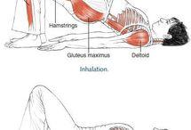 Pilates anatomia