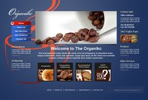 Kidlatz Web Development / Sample of Low-Cost website designs under Kidlatz