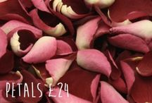 Rose Petals for weddings / We have a fab range of beautiful freeze dried rose petals. www.confetti-cones.co.uk