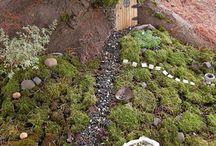 Klein tuin