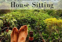 House Sitting / House Sitting
