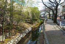 Green Roads in Japan