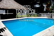 Tropical Casablanca Hotel / Tropical Casablanca Hotel Youth & Chic.  Enjoy a vacation in Playa del Carmen close of everything, BeachClub, pool and the best Night life Clubs