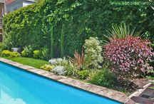 jardin en Buenos Aires / Remodelación de un jardin utilizando conceptos de jardineria sostenible ,ahorro de recursos y bajo mantenimiento