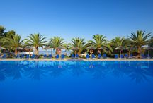 Blue Dolphin Hotel, 4 Stars luxury hotel in Sithonia - Nikiti, Offers, Reviews