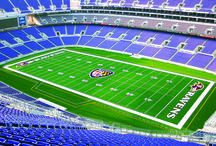 Baltimore Ravens / Shaw Sports Turf has a relationship with the Baltimore Ravens dating back to 2003.  This board features images of and about the Ravens and our turf.