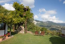 Tree Houses / Discover the best eco-friendly tree houses and tree hotels in Italy and Europe.
