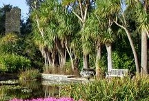 Beautiful Gardens to explore while you are on holiday with us! / Beautiful Gardens to explore while you are on holiday with us