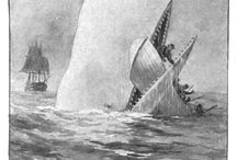 Moby Dick: Classic Illustrations / Featuring several illustrations from Herman Melville's classic tale, popular reading for middle school and high school language arts classes.