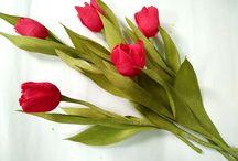 tutorial flori
