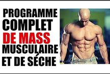 Prisse masse musculaire