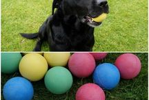 Pets /  Dog Ball Launcher, Pet Fence, Dry Dog Food Chicken Treat, Scooper Pooper, Ceva Feliway Diffuser Refill, Uv Aquarium Canister Filter Starilizer, Outdoor Bark Deterrent