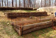 Garden & Landscaping / Home and garden ideas