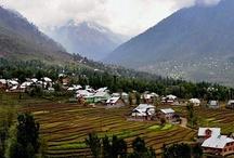 Kashmir Valley / by Yaseer Waj
