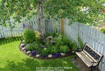 Blommor trädgård