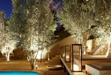Hotels in Namibia