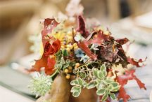 Thanksgiving / A moment in time to celebrate a day of Thanksgiving. / by SMP Living
