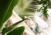 TROPICAL HOME / Interior design home tropical style