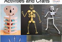 sınıf aktiviteleri