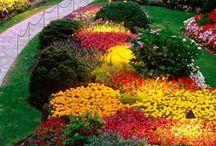 bajkowe ogrody
