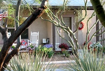 Innkeepers / We are Innkeepers in Tucson AZ and love to talk with other Innkeepers about lodging ideas, breakfast menu's, and general innkeeping tips and tricks..  How about YOU? / by Mare Smith