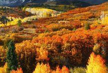 Príroda na jeseň