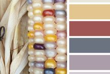 color corn Michaels