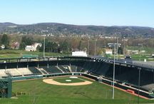 Welcome to Williamsport, PA: Home of Little League Baseball / Williamsport, PA welcomes the world every August during the annual Little League Baseball World Series. Here are some of the highlights. / by Robin Van Auken