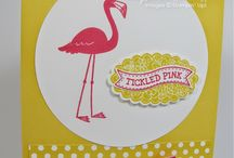 Card Ideas - SU Flamingo Lingo / by Lisa Gundrum