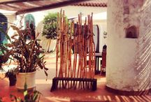 Giardino - Garden / Spazi in comune di Villa Hybla