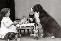 Tea parties!