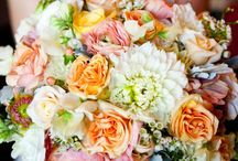 Flowers / by Colleen Cigna