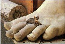 Animali ... e arte