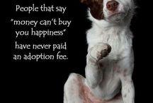 Adopt, Rescue, Love