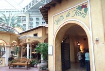 Orlando Dining / Best places to eat, drink and snack in Orlando and central Florida. The best budget, gourmet, local and specialty restaurants, diners, food trucks, food stands, theme park destinations and more.
