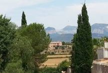 Interessantes aus Mallorca / Interessante Infos rund um die Insel Mallorca