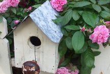 Bird Houses / by Caryl Bragg