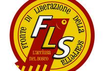 Fronte di Liberazione della Scarpetta / https://www.facebook.com/groups/113476615450955/
