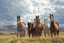 Horses, Horses, Horses!!!