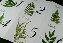 Table numbers/nicol