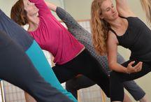 Yoga Workshops and Yoga Series