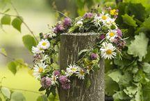 ♣ The Little Village's Flower Queen♣ / The Farmer's Little Fairy*