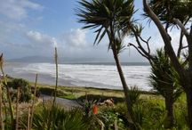BIO/ENV Ecology Fieldcourse to Ireland 2013 / Fieldcourse for 2nd year ENV and BIO students to Inch, Co Kerry, Ireland