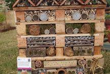 School Habitat Gardens / Ideas for creating a school habitat garden