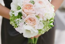Wedding Photo Inspiration / by Madeline Roberts