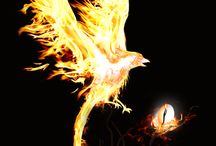 Fire / Feuer / Ateş / Please Like and Pin ! Thank you