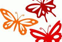 witaż motyle