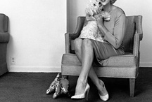 1961  Marilyn Monroe and her dog Maf by Eric Skipsey / 1961 , May - Marilyn Monroe with dog 'Maf Honey' (a gift from Frank Sinatra) at the Beverly Hills Hotel, by Eric Skipsey .