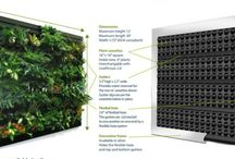 Welcome to the  Jungle / Green Walls, Living Walls, Biophilia, The Power of Plants