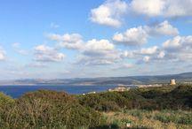 Sardinia / The beautiful island of Sardinia.